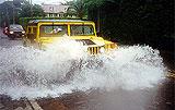 Driving in rain - noyes news