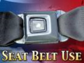 Seat belt3 - noyes news